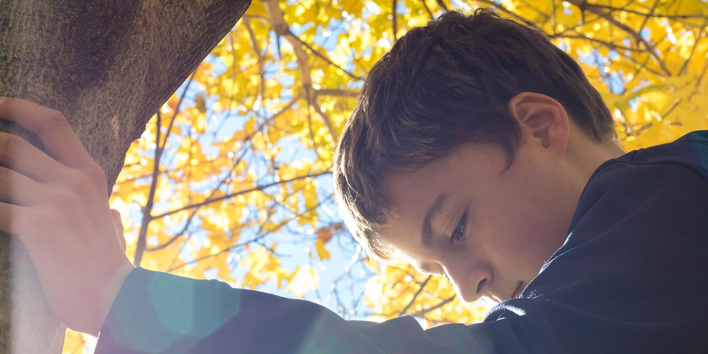 Shaping Positive Behaviors